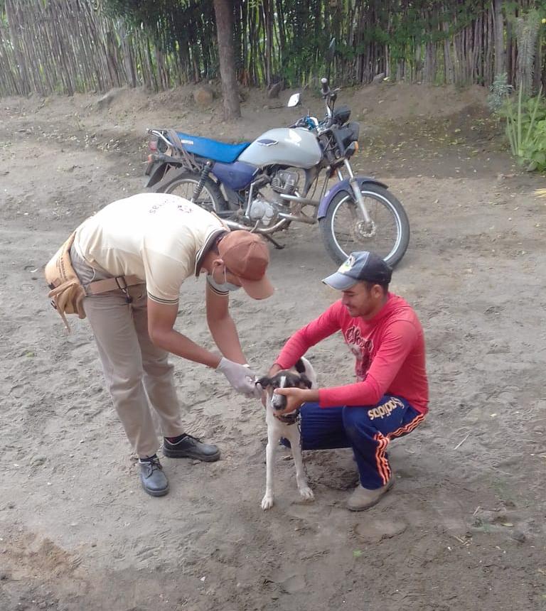 Agentes de Endemias de Poço Dantas realizam atividades de combate ao mosquito transmissor da Leishmaniose