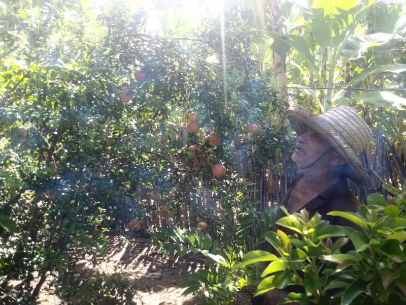 agricultores-de-poco-dantas-recebem-assistencia-tecnica1.png