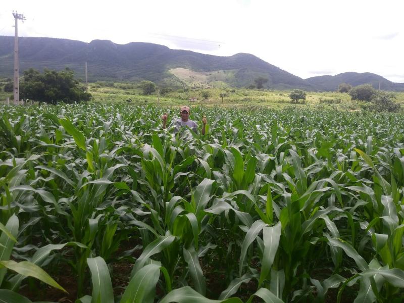 agricultores-de-poco-dantas-recebem-assistencia-tecnica5.png