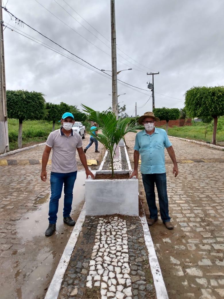 Prefeitura Municipal de Poço Dantas inicia projeto de rearborização do município